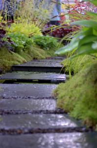Path_steps